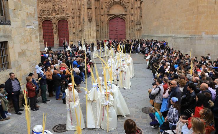 Procesión del Domingo de Ramos en Salamanca