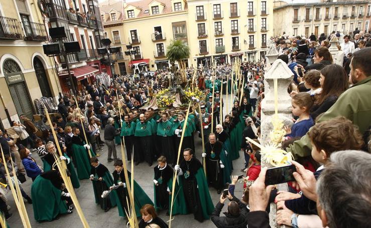 Procesión de la Borriquilla en Valladolid (1/6)