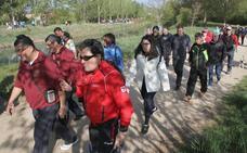 Aspanis espera alcanzar los 15.000 euros en la marcha del 11 de mayo