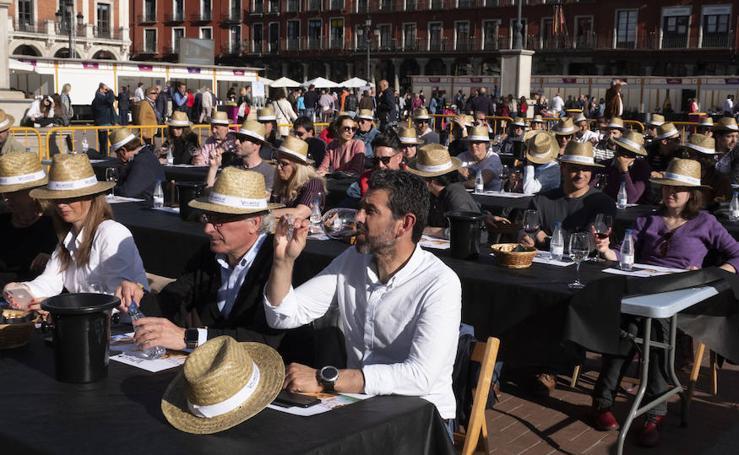 Viernes por la tarde en 'Valladolid, Plaza Mayor del Vino'