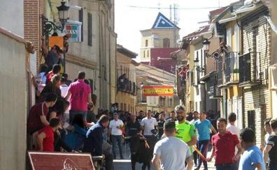 La localidad vallisoletana de Mayorga congrega a cientos de personas en el encierro de Santo Toribio