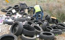 La Guardia Civil investiga un vertido de neumáticos junto al cementerio de Palencia