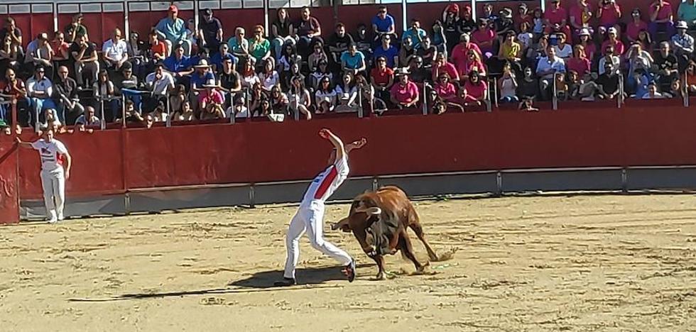 La Liga de Corte Puro triunfa en la plaza de toros de Valdestillas