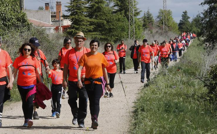 Palencia se entrega a la marcha Aspanis