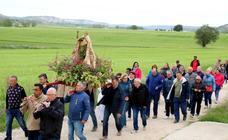 Intensas fiestas de San Gregorio en Baltanás