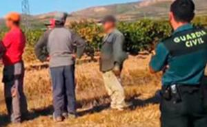 Detenidos por explotación laboral tres miembros del clan de Tordesillas que forzó el destierro de otro