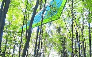Rescatan a una mujer que quedó colgada de un árbol cuando volaba en ala delta sobre la provincia de Palencia