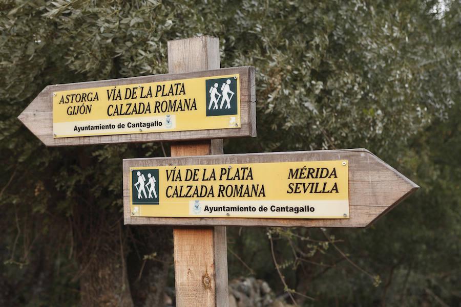 Un paseo por la Vía de la Plata