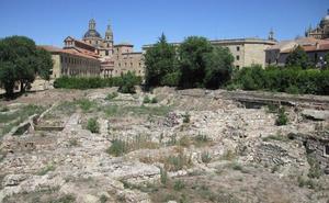 Los patrimonialistas piden un plan «de mayor envergadura» para las ruinas del Botánico