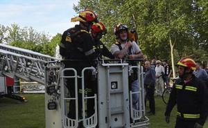 Los bomberos de Valladolid bajan a un guacamayo de un árbol de diez metros