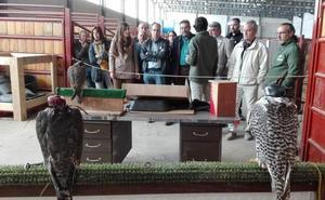 Los profesionales del campo demuestran su destreza en la Feria de Mayo de Ciudad Rodrigo