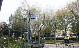 El Ayuntamiento recurrirá ante el TSJCyL la resolución sobre el contrato de conservación y mantenimiento de jardines