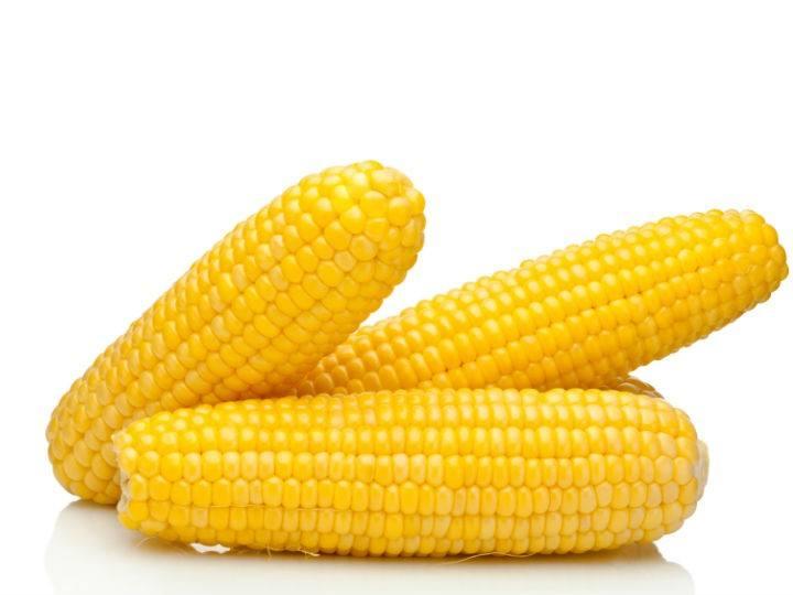 Maíz: un cereal que llegó de América