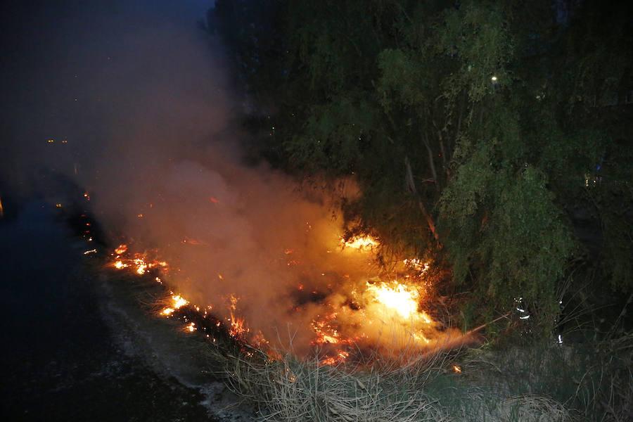 Espectacular incendio en la ribera del río Carrión