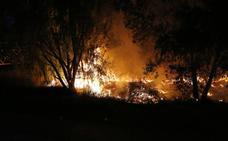 La orilla del Carrión arde en Palencia en un espectacular incendio originado por la quema de pelusas