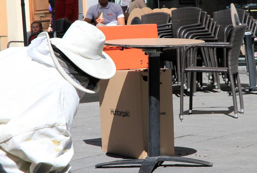 Los bomberos retiran un ejambre de abejas posado bajo una mesa de terraza de la avenida del Acueducto.