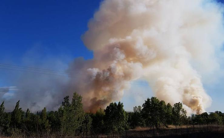 Incendio junto a la piscifactoría de Cabrerizos, en Salamanca