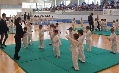 Más de trescientos niños y niñas en el festival de judo de Zaratán