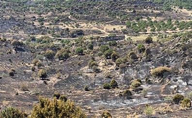 Las causas del incendio en el municipio abulense de Hoyo de Pinares apuntan a una negligencia