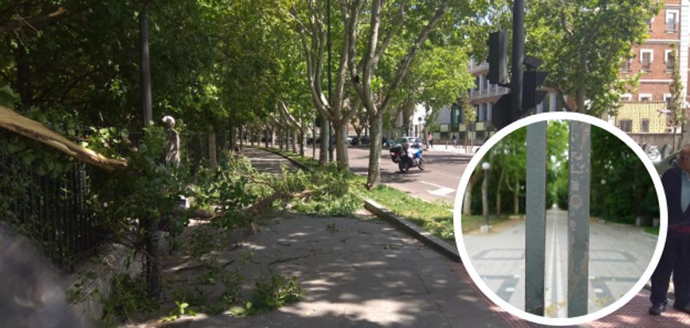 Los bomberos de Valladolid intervienen en diez ocasiones a causa del viento