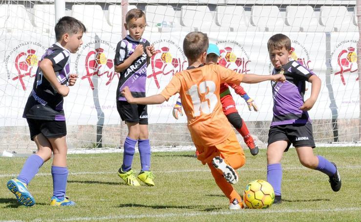 Deporte Base del 1 y 2 de junio. Valladolid (2/2)