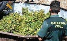 Detenido por tráfico de drogas y tenencia ilegal de armas en Muñoyerro (Ávila)