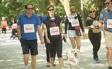 Participantes en el VII Día de la Familia en Marcha de CaixaBank (3/5)