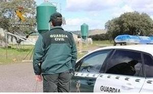 Dos menores detenidos por provocar un incendio con pelusas de chopos en la ribera del Pisuerga