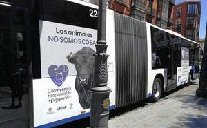 Libera! llevará al Procurador del Común la retirada de la campaña animalista en un autobús de Valladolid