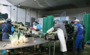Los principales ayuntamientos de Segovia lo tienen claro: con empleo se fijará población