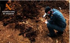 La Guardia Civil de Palencia investiga a un hombre por matar a un perro con una carabina y herir a otros seis y a un asno