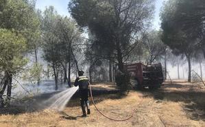 Bomberos de Medina sofocan un incendio en el Pinar de Molón
