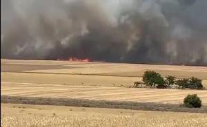 Declarado un incendio en Las Berlanas (Ávila)