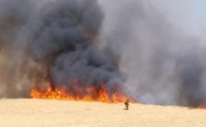 Un incendio en Las Berlanas (Ávila) obliga a cortar una carretera y moviliza a varios efectivos de la Junta