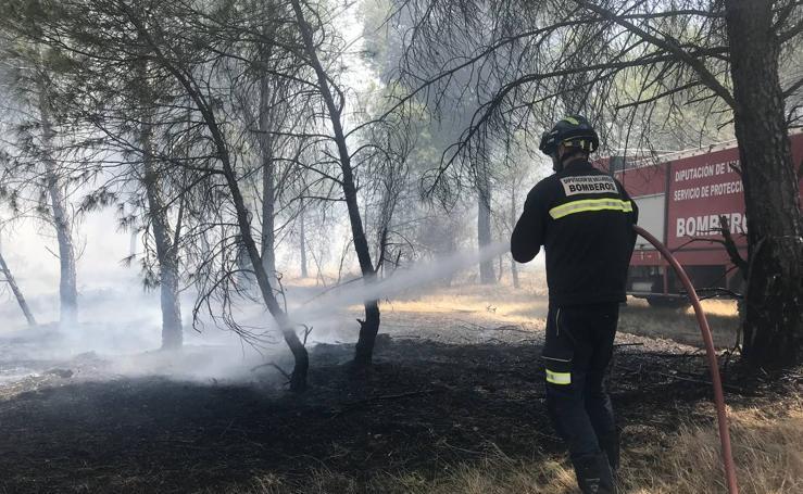 Incendio en El Pinar de Molón en Medina del Campo