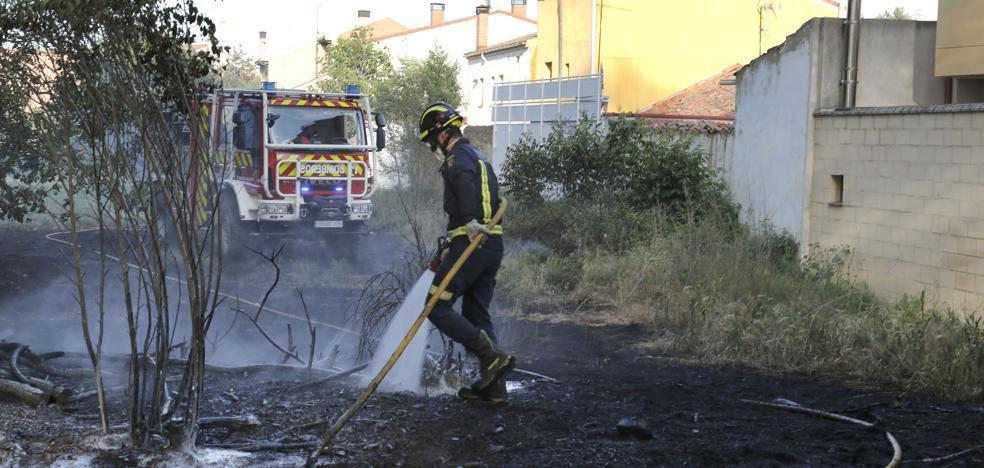 La Fiscalía de Castilla y León advierte de que quemar pelusas puede conllevar pena de cárcel