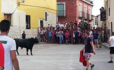 El Toro del Corpus atrae a cientos de personas en Tiedra