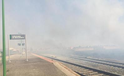 Varios incendios causan la alarma en Peñaranda de Bracamonte