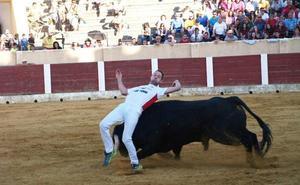 Olmedo acoge el 29 de junio la última eliminatoria del III Concurso de Cortes de Castilla y León