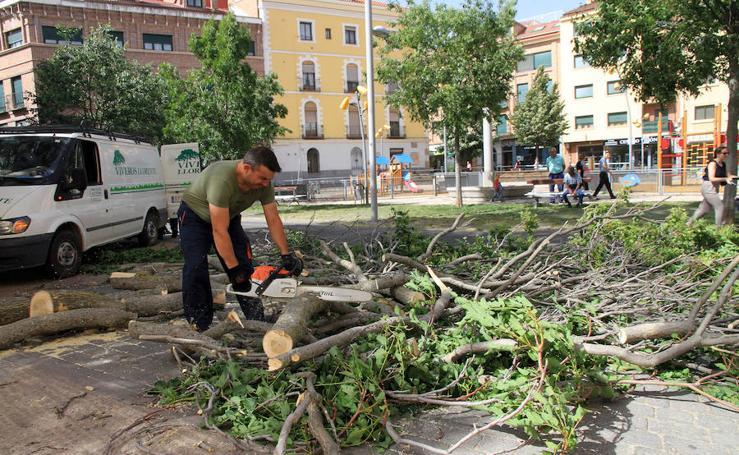Efectos del vendaval en Segovia y Torrecaballeros