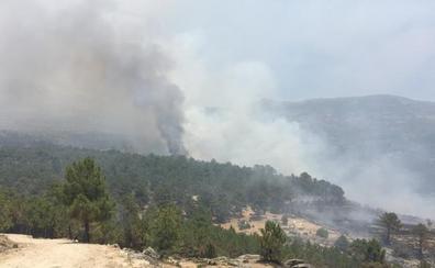 Fomento confirma el «factor humano» en los dos fuegos de Ávila y espera que se estabilicen hoy