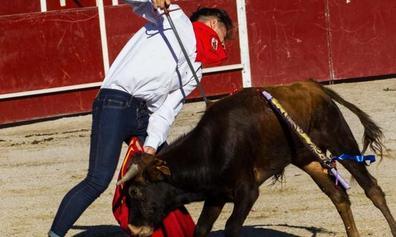 Pacma confía en «la presión social» para impedir las becerradas en El Espinar
