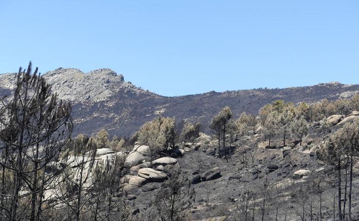 Así ha quedado la provincia de Ávila después de los incendios