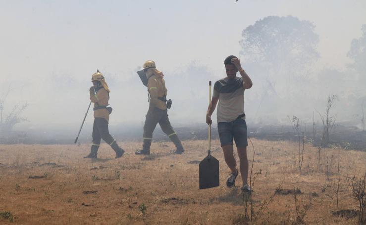 Incendio en Trescasas (1)
