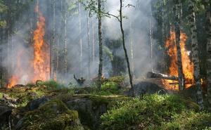 Ocho incendios simultáneos en la provincia de Ávila
