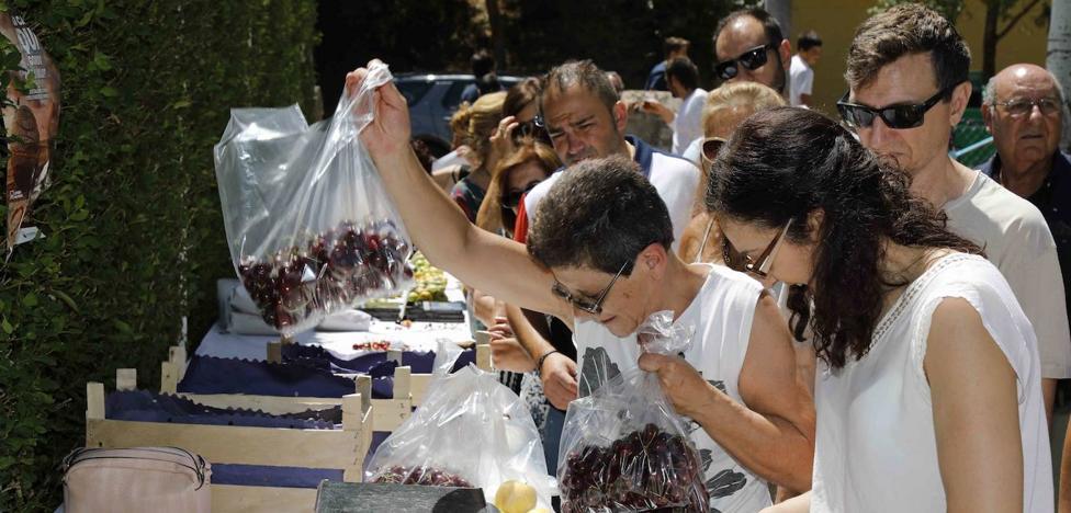Piñel de Abajo presume de cerezos y de sus cultivos de trufa de verano