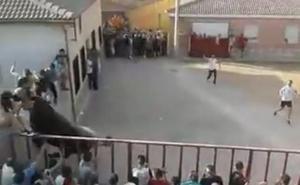Un toro asusta a los vecinos de Cañizar, Guadalajara, al chocar contra un muro