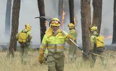 Incendio entre Traspinedo y Sardón