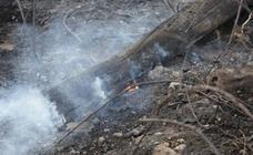 Incendio junto al polígono El Montalvo
