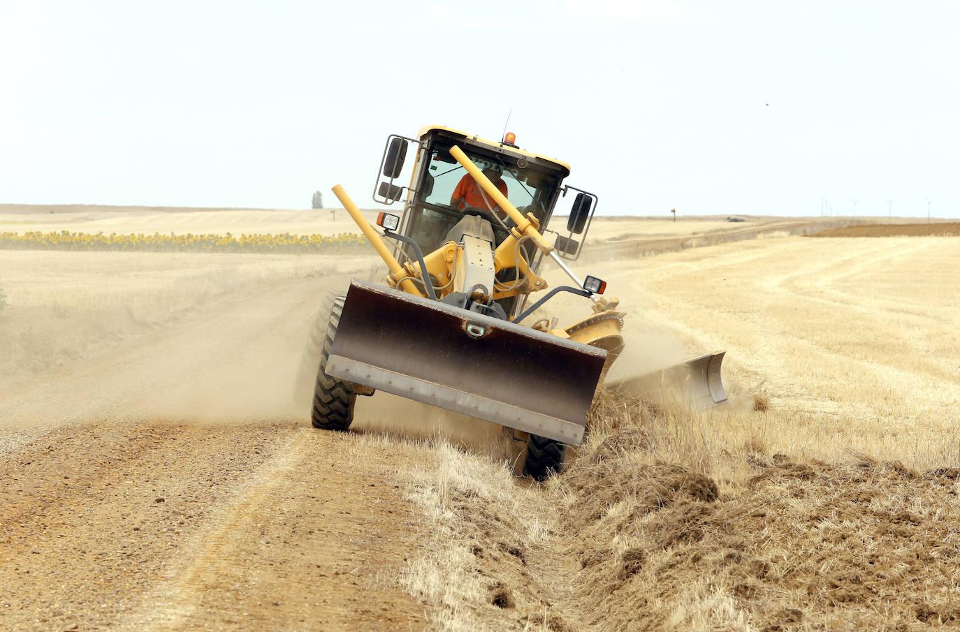 La limpieza de cunetas se intensifica en Palencia para frenar la plaga de topillos